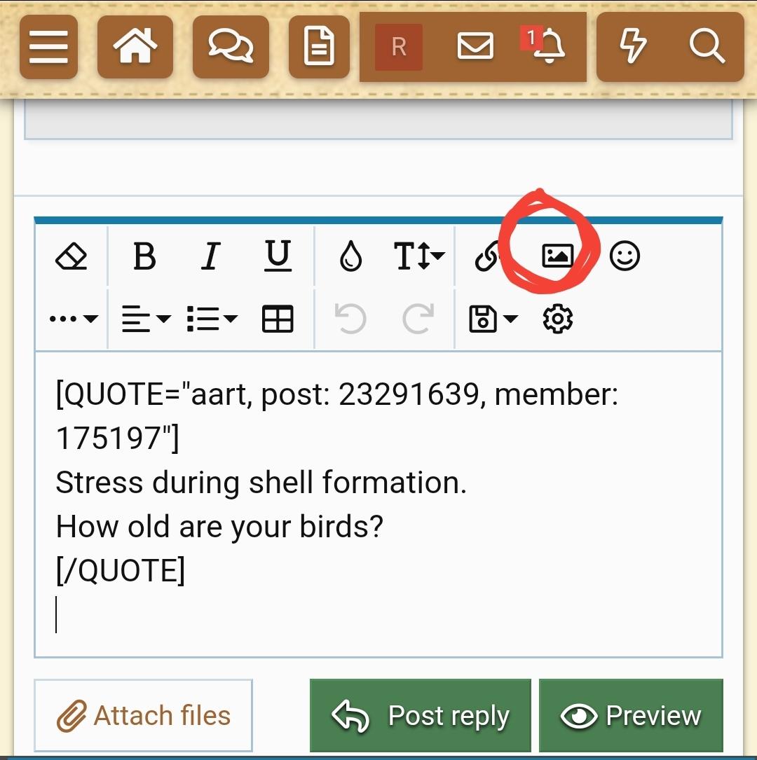 Screenshot_20200924-115738_Samsung Internet.jpg
