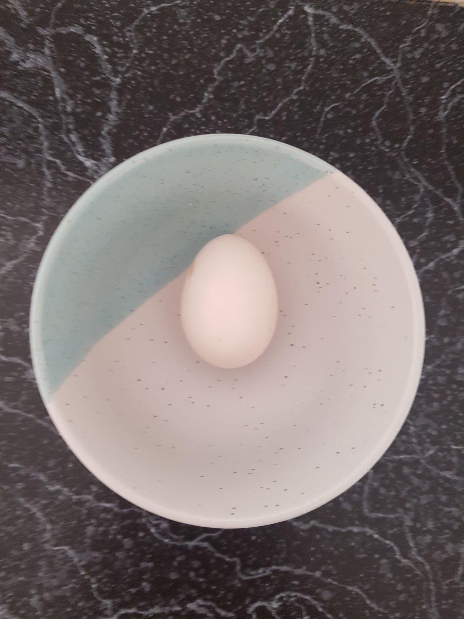 silkie egg.jpg