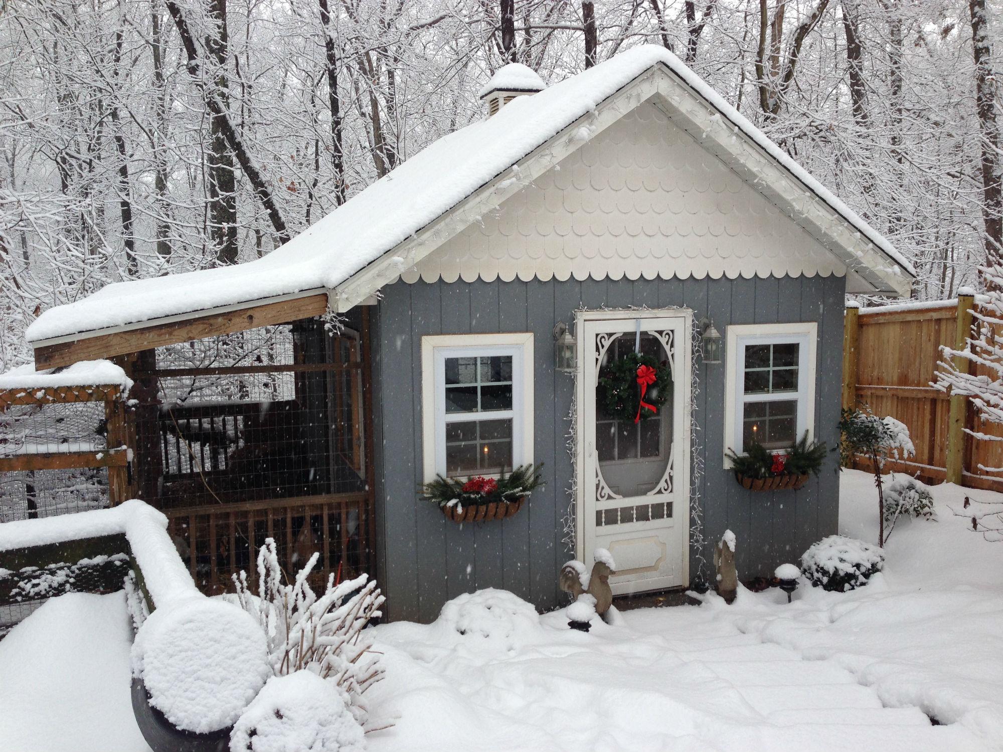 snow coop front.jpg