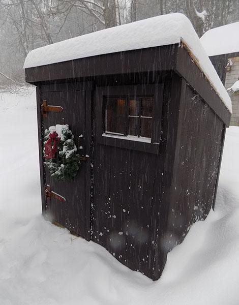 snow_goosecoop1 copy.jpg