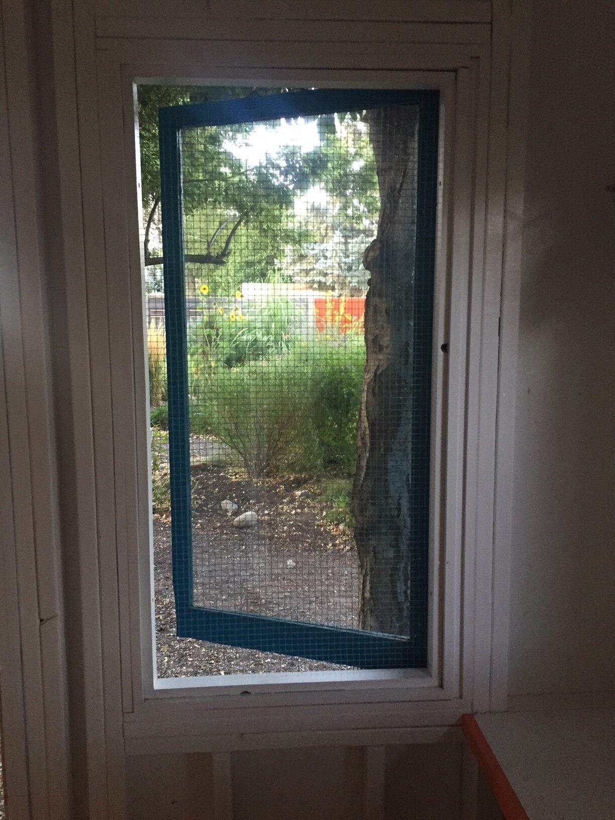 South Window.JPG