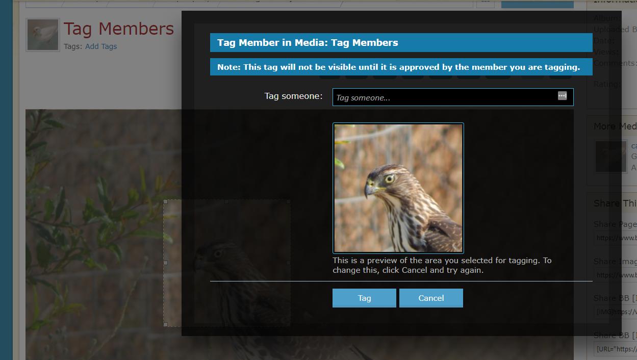 tag_members_2.png