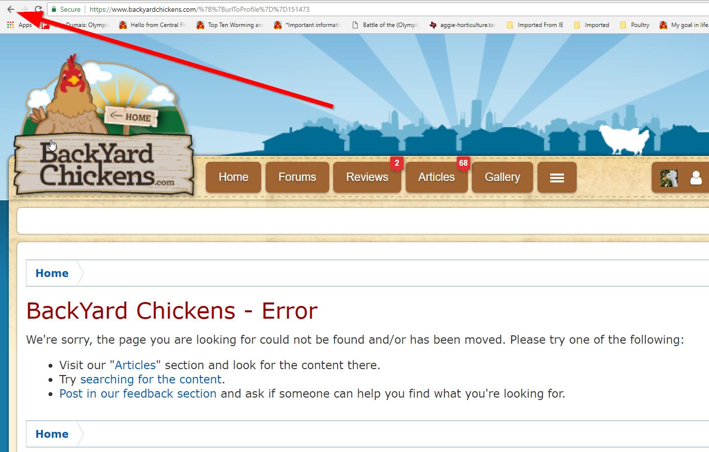 threadloom search bug_5.png