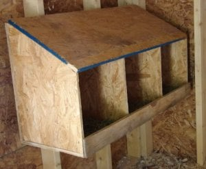 Pictures of chicken nesting boxes how to build a nest for Design your own egg boxes