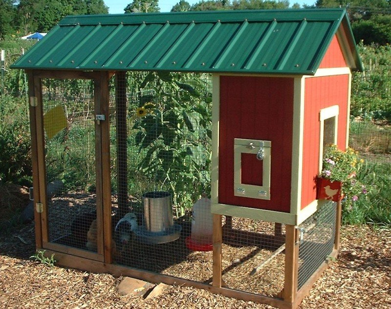 Playhouse chicken coop backyard chickens community for Small chicken house plans