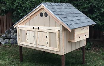 A Frame Chicken Coop Backyard Chickens