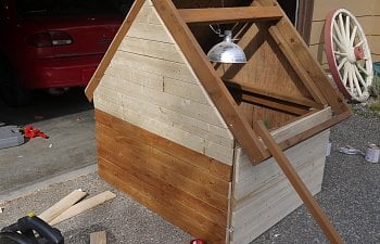 Smallish Chicken Hut Backyard Chickens
