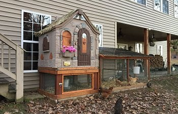 Cottage Playhouse Plastic Chicken Coop.