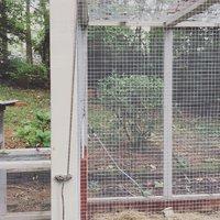 IMG_2356.JPG & DIY solar powered doors   BackYard Chickens Pezcame.Com