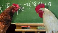 chicken_math.jpg