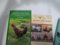 Chicken stuff 003.JPG