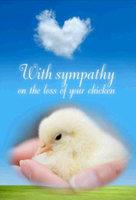 Chick Sympathy.jpg