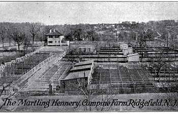 A Village Poultry Plant: The Campine Farm of S.V.R. Martling