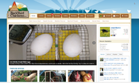 homepage_chrome_1 (Small).png