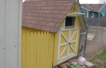 ChickensCoopEggsSpring10025.jpg