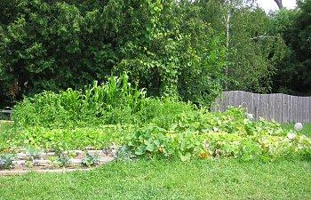 Garden-Overall-2.jpg