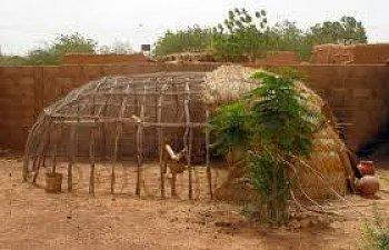 africancoop-1.jpg
