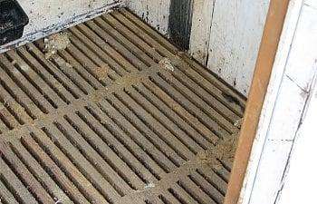 duck-hut-floor-1.jpg