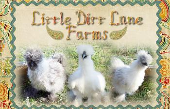 LittleDirtLaneFarmsLogo-2.png