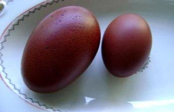 eggs2-1.jpg