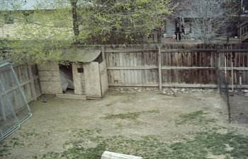 ChickenCoop022.jpg