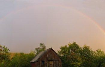 rainbowfinal2.jpg