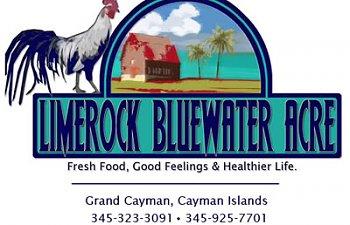 LimerockBluewater-Letterhead.jpg