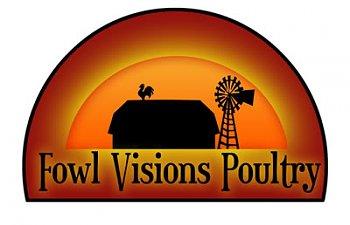 FowlVisions.jpg