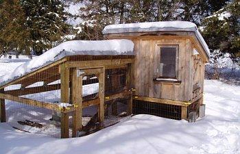 30865_chicken_coop_winter_020.jpg