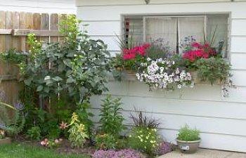 57613_garden_011.jpg