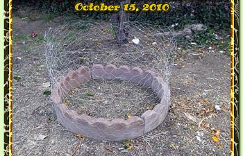 10-15-2010-outside-pen-002.png