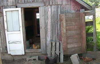 61362_barn_010.jpg
