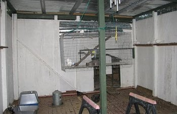 44847_back_of_aviary_and_hospital_cage_2.jpg