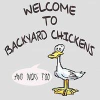 BYC and Ducks.jpg
