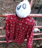 scarecrow2 (3 of 1).jpg