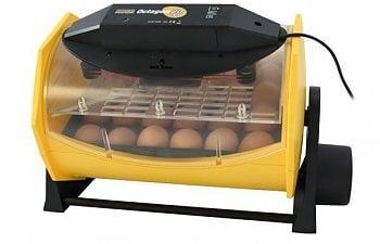 incubator- suggestions.jpg