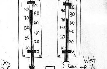 hygrometer incubation.JPG