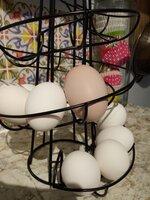 Rubys egg!.jpg