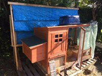Coop w new shade roof 2. viber_image_2019-09-21_09-08-30.jpg