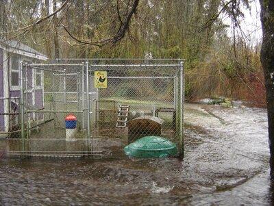 flooding8.jpg