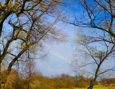 11 25 rainbow.jpg