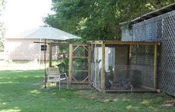 Kats Silly Chickenss Chicken Coop