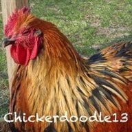 Chickerdoodle13