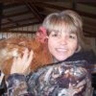 chicksnducks