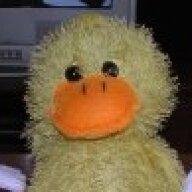Beaker Duck
