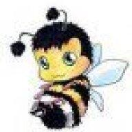 bumblebee69