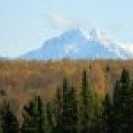 AlaskaGrownEggs