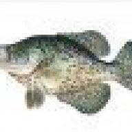 crappiefisherman