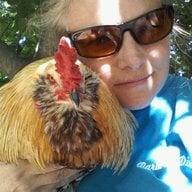 Chickmagnet9
