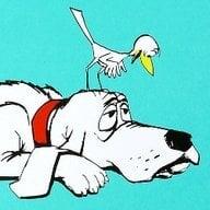 cluck-cluck